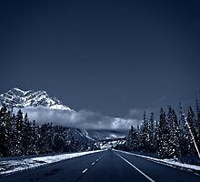 Blue Drive  by Judy Grant