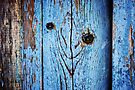 Happy Fencepost  by Laurie Minor