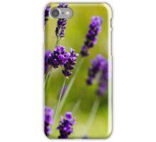 Lavendar iPhone Case/Skin