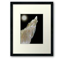 ALPHA MALE (Souls Of Man) Framed Print