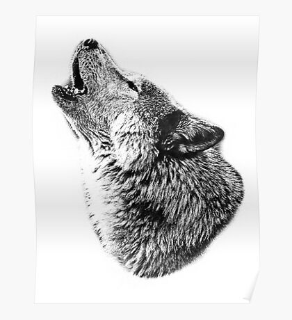 Wolf Howling. Digital Wildlife Image. Poster