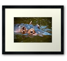 Happy Hippo Portrait Framed Print