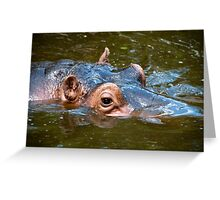 Happy Hippo Portrait Greeting Card