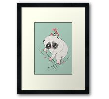 Fat Loris! Framed Print