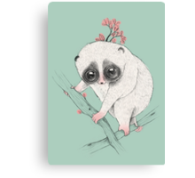 Fat Loris! Canvas Print