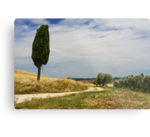 A Tuscan Scene, Pienza, Siena, Tuscany, Italy Metal Print