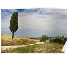 A Tuscan Scene, Pienza, Siena, Tuscany, Italy Poster