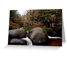 Forest 3 Greeting Card