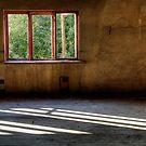 23.9.2014: Morning Light on the Floor by Petri Volanen