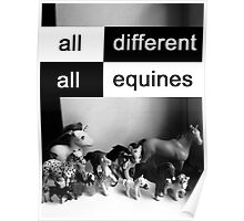 All different, all equines Poster