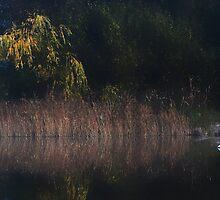 Monastery Lake.......... by Imi Koetz