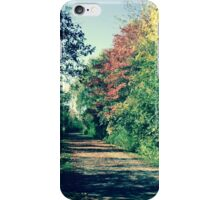 Fall collection iPhone Case/Skin