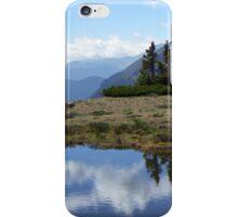 Terra Tomah RMNP iPhone Case/Skin