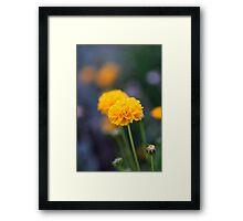 Golden Garden Flowers Framed Print