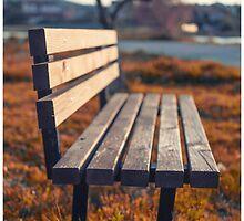 Bench by marko-stosic
