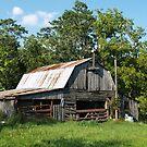 A Little Barn In Arkansas by joelmcafee