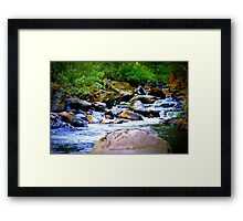 Signature Photo Framed Print