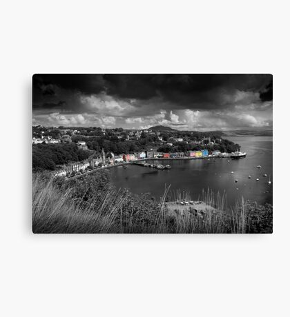 Colours of Tobermory  Canvas Print