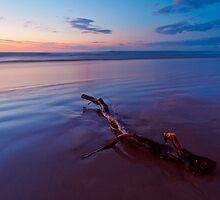 Downhill Beach  Co Derry  Northern Ireland by Zdrojewski