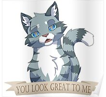Warrior Cats: Sarcastic Jayfeather Poster