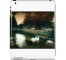 Swans on a river circa 1910 iPad Case/Skin