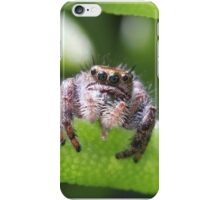 Do spiders have a tongue? iPhone Case/Skin