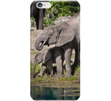 Elephants -Mom and baby iPhone Case/Skin