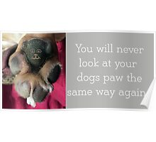 You will never look at your dogs paw the same again... Poster