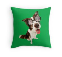 Crazy Border Collie dog wearing glasses Throw Pillow