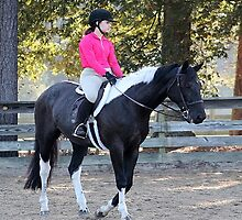 Deer Run Horse Show Club Sept. 20, 2014 (11) by DLitefulImagery