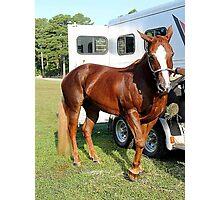 Deer Run Horse Show Club Sept. 20, 2014 (21) Photographic Print