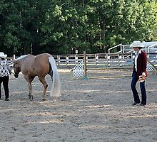 Deer Run Horse Show Club Sept. 20, 2014 (37) by DLitefulImagery