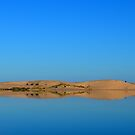 Silver Lake Sand Dunes 2 by Debbie  Maglothin