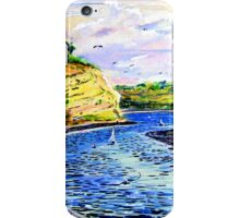 Upper Newport Bay iPhone Case/Skin