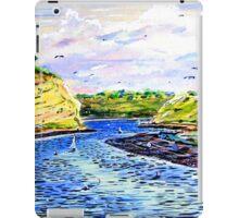 Upper Newport Bay iPad Case/Skin