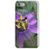Passion Flower.....Passiflora iPhone Case/Skin