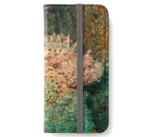 Red Scorpion Fish (Scorpaena scrofa) on a wreck iPhone Wallet/Case/Skin
