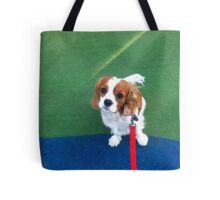 BigMo/LittleMo Tote Bag