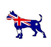 Australian Flag - Boxer Photographic Print