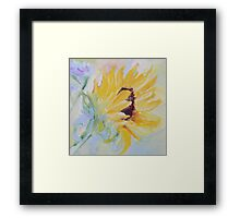 sunflower in profile Framed Print