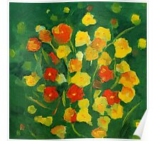 orange and yellow flowers  Poster