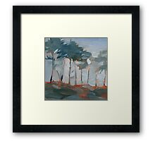 cypress trees and fog Framed Print