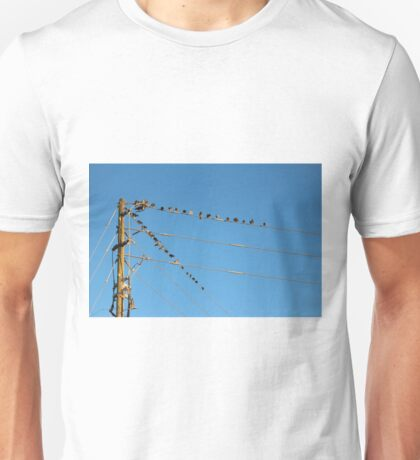 Power Line Birds Unisex T-Shirt