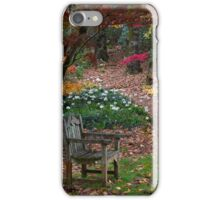 Autumn in Mt. Wilson iPhone Case/Skin