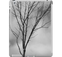 This is a Lonely Tree iPad Case/Skin