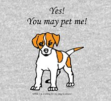YES You may pet me (while I'm waiting for my dog to return!) Womens Fitted T-Shirt