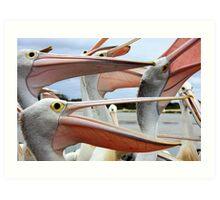 The Pelican Song Art Print