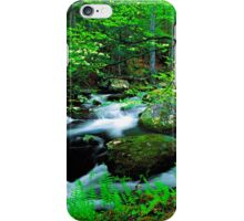 MIDDLE PRONG LITTLE RIVER, SPRING iPhone Case/Skin
