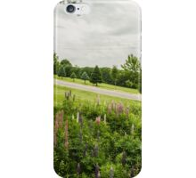 Lupins in the ditch iPhone Case/Skin
