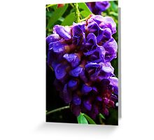 Hanging Purple Greeting Card